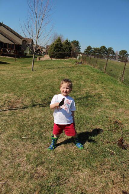gardening-boys3